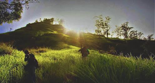 Kohonawala
