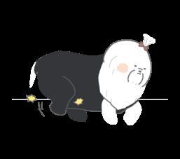 貓狗走路怪怪的