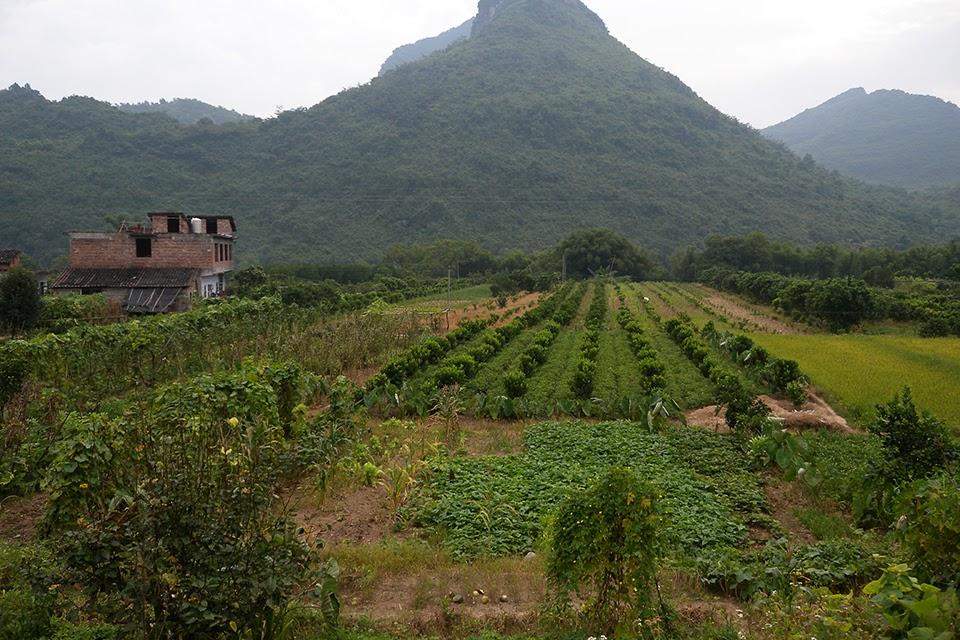 2009071902 - Yangshuo