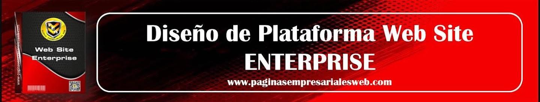 Plataformay Paginas Web Enterprise