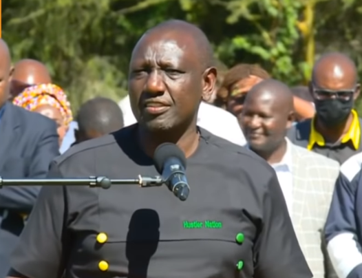DP RUTO: Shift Conversations to the Common MWananchi and the Economy