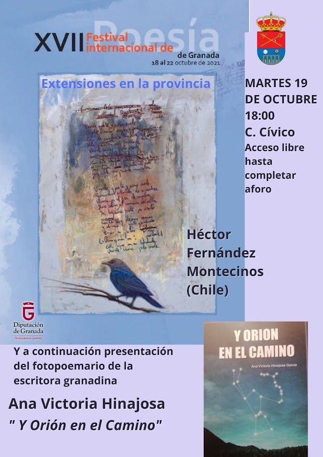 17 festival internacional poesia