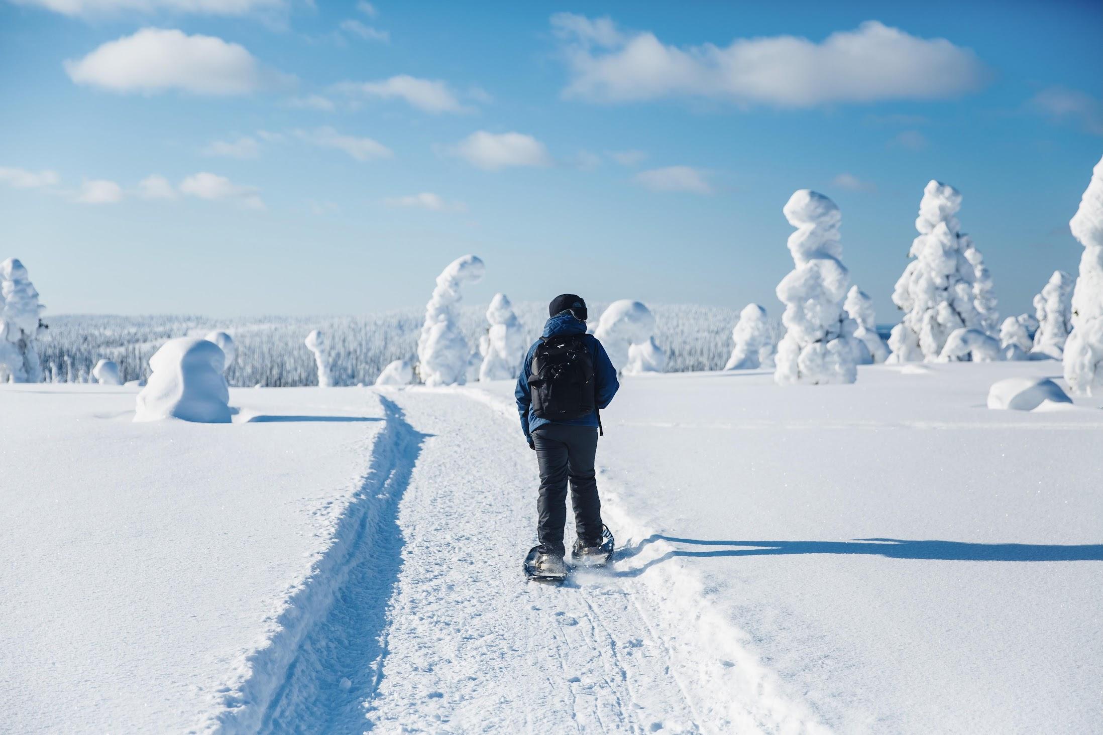 fins-lapland-winter