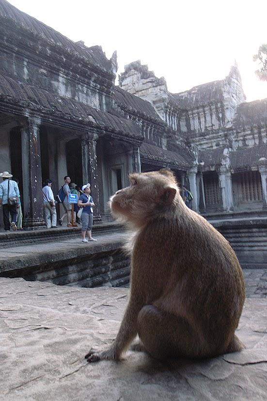 2007092509 - Angkor Wat