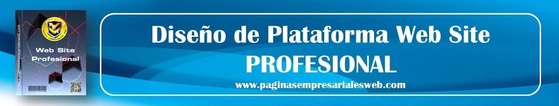 Diseño de Plataforma Web Profesional
