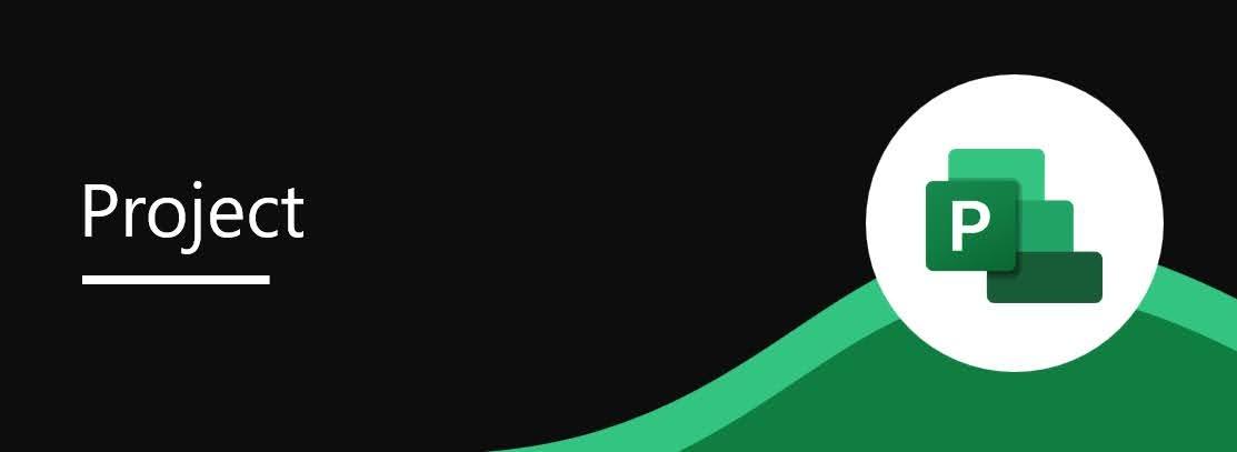 82141: Microsoft Project: Charts view