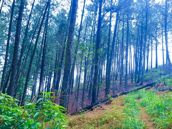 Monara Gala Mountain