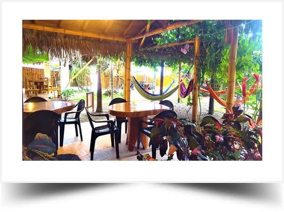 Area Social La Mariposa Hostal