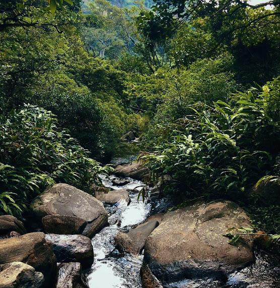 Kolapathana Waterfall
