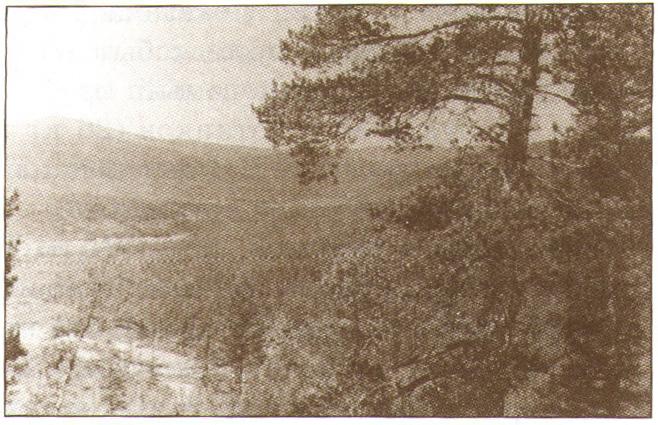 Долина реки Балаганах
