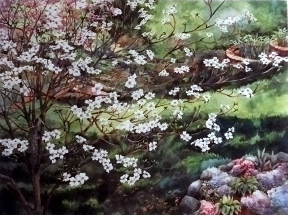 Watercolor by Shirley Nachtrieb