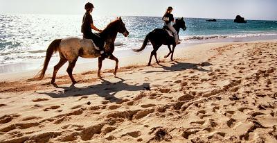 1-hours Krabi Horse Riding at Ao Nam Mao Beach