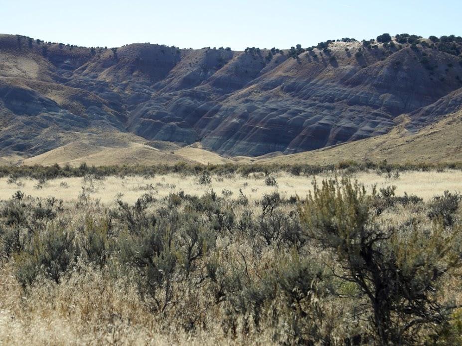 Guerra dos Ossos, a disputa na descoberta de fósseis