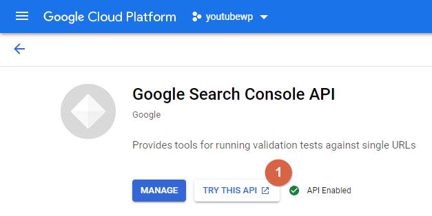 Google Cloud Platform TRY THIS API
