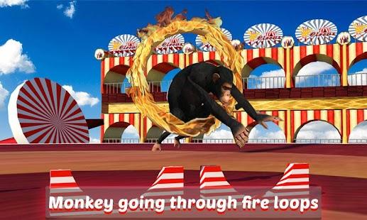 Goat-Monkey-Stunts 2