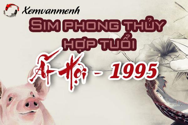 xem-sim-phong-thuy-hop-tuoi-at-hoi-1995