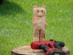 Photo: Looking more and more like a bear; Mark LeClair's chainsaw art at Lake Carmi State Park by Sara Hayes