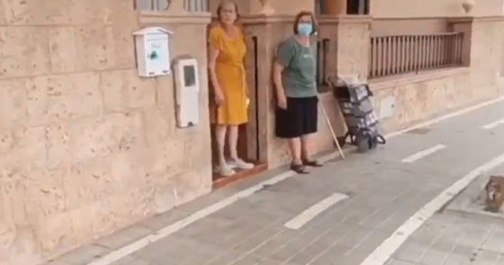 PP y PSOE, enfrentados por la queja de una vecina sobre el carril bici