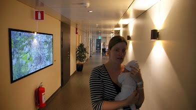 Photo: Årstaviken Hotel Korridor