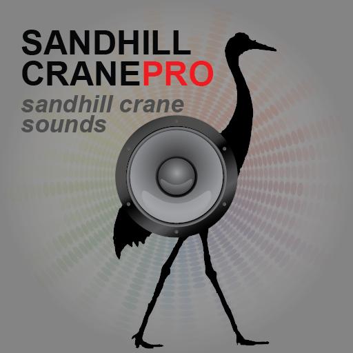 Sandhill Crane BLUETOOTH hack tool