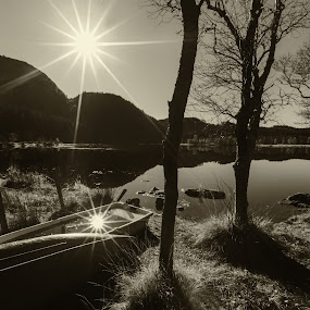 Autumn by David Guest - Black & White Landscapes