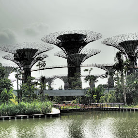 Garden by the Bay by Obed Hariyono - Buildings & Architecture Bridges & Suspended Structures