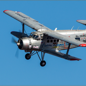 Little Annie by Hannes Kruger - Transportation Airplanes ( russian, airplane, antique, an-2, airshow )