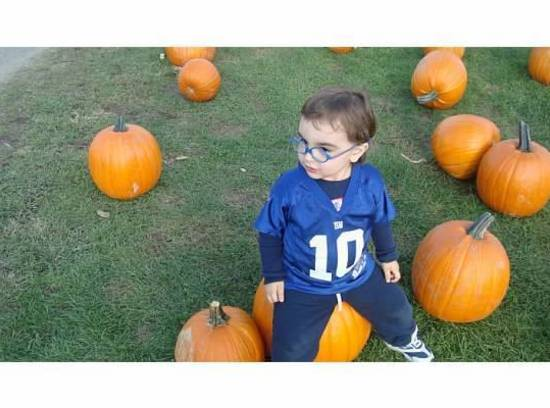 My son enjoys helping me such for the best pumpkins, for our Halloween Pumpkin...