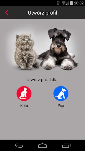 Modern Pet