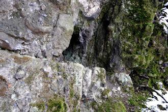 Photo: Üregek és párkányok a Macska-lyuk külső sziklafalán.  Macska-lyuk, Szentendre