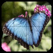 Tile Puzzles · Butterflies