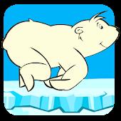 Polar Bear Run