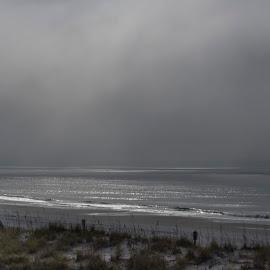 Morning Light by Anita Frazer - Landscapes Beaches ( beach, morning,  )