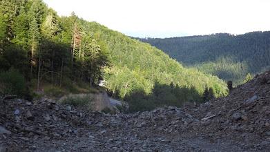 Photo: Végeláthatatlan összefüggő erdőség