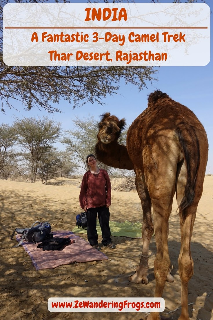 A Fantastic 3-Day Camel Trek in the Thar Desert, Rajasthan