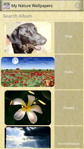 私の自然の壁紙|玩攝影App免費|玩APPs