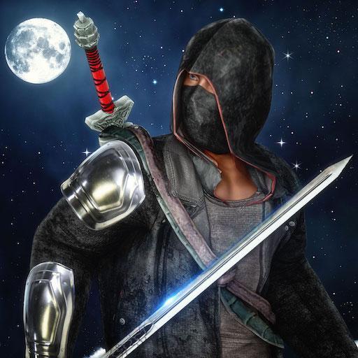 Ninja Master Assassin Hero