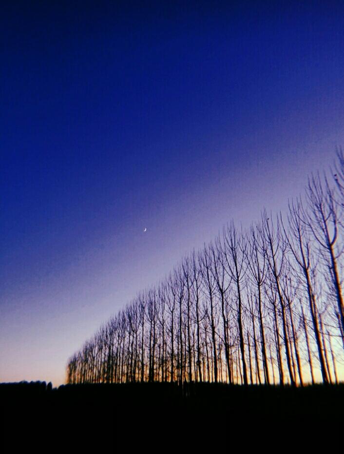 La notte dei miracoli di Planct
