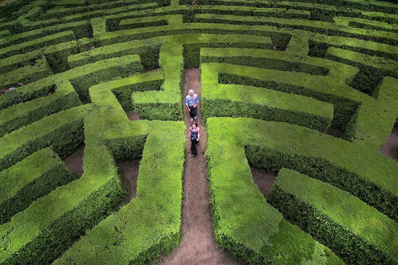 Il labirinto di Giulio61