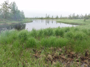 Photo: Перед озером Хышлор, протока заросла травой.
