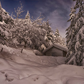 Hidden in the snow and among the trees by Ana France - Landscapes Mountains & Hills