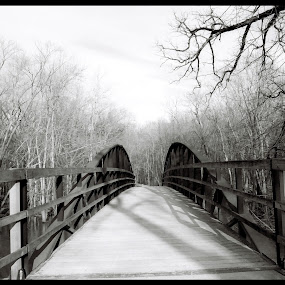 bridge over the river by Brittany Humphrey - Buildings & Architecture Bridges & Suspended Structures ( film, metal, traditional, forest, bridge, preserve, river )