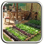The Idea of Minimalist Vegetables Icon