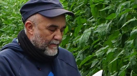 La fertilización y la genética, una de las alianzas clave para el agricultor