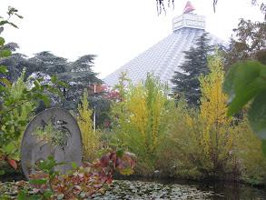 Photo: Осень, венская осень