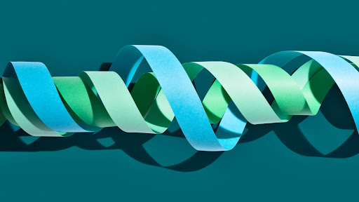 Predicting gene expression with AI