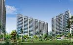 Real Estate Consultant in Pune