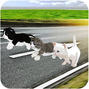 Kitten Cat Craft Racing:Cute Cat World Tournament