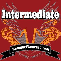 Badge-Level-Intermediate