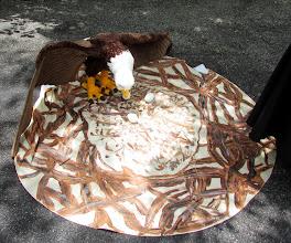 Photo: Life sized eagle and nest.